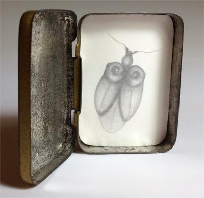 Esther Maurer, Boîte Scarabelle